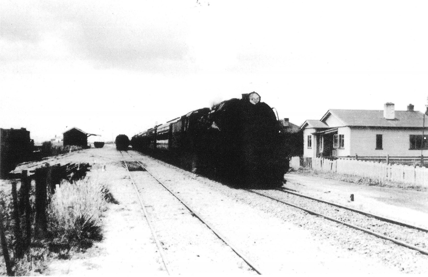 The express from Rotorua on the main line at Eureka, 1957